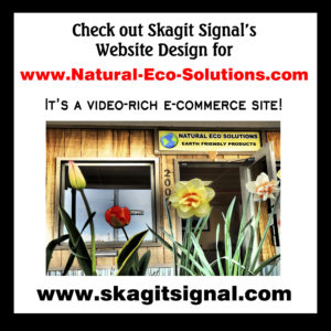 Webdesign Ping for Natural Eco Solutions_smaller